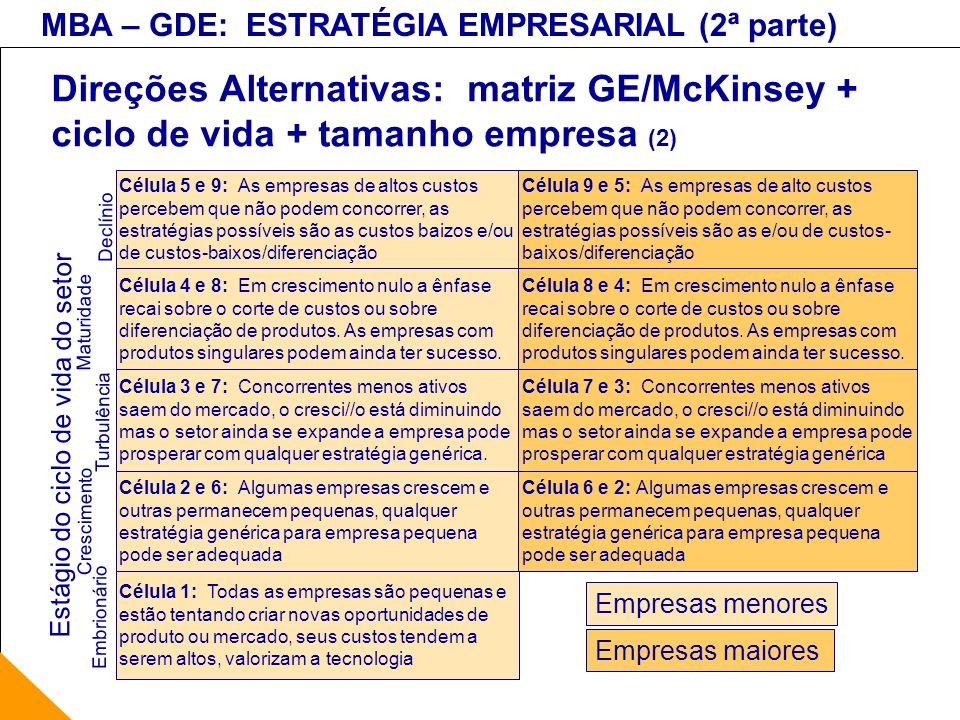 Direções Alternativas: matriz GE/McKinsey + ciclo de vida + tamanho empresa (2)