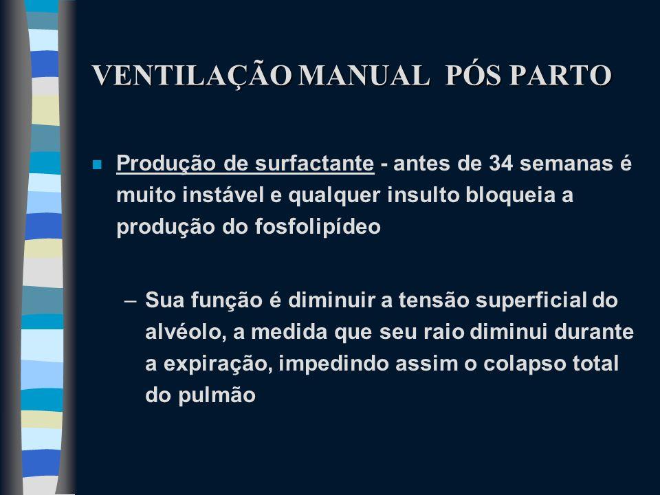VENTILAÇÃO MANUAL PÓS PARTO