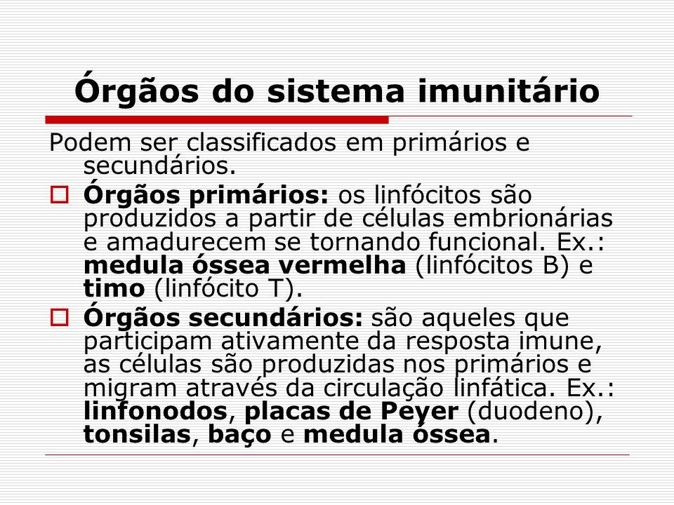 Órgãos do sistema imunitário