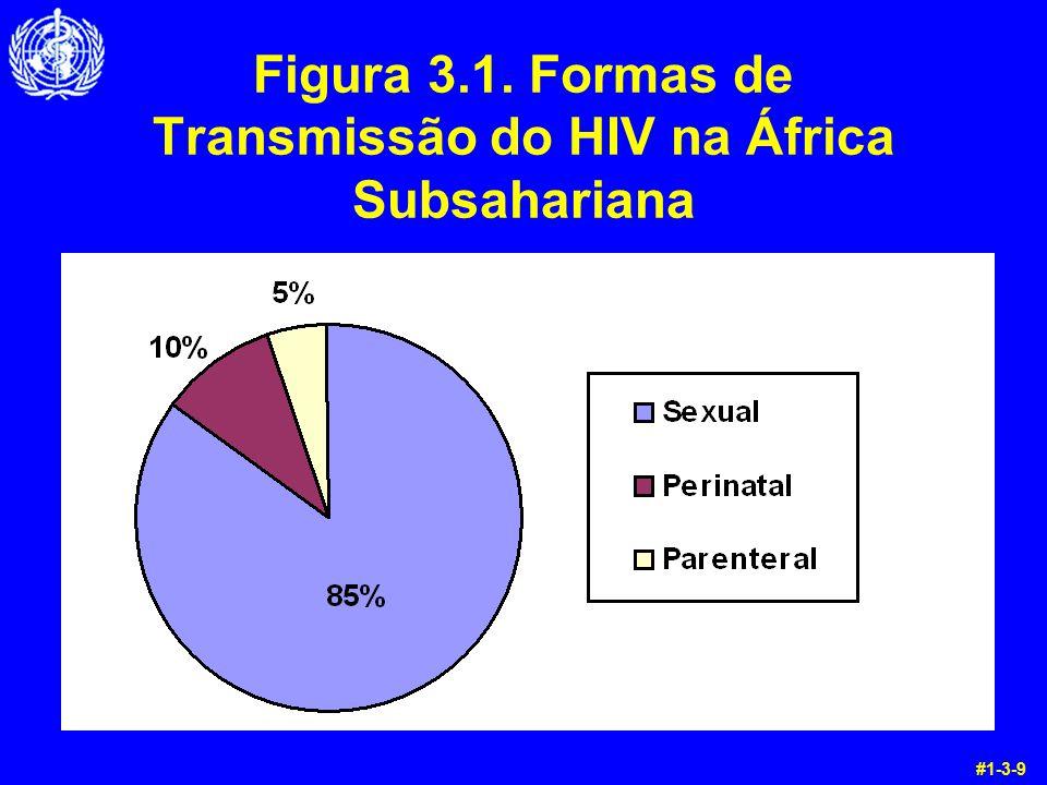Figura 3.1. Formas de Transmissão do HIV na África Subsahariana