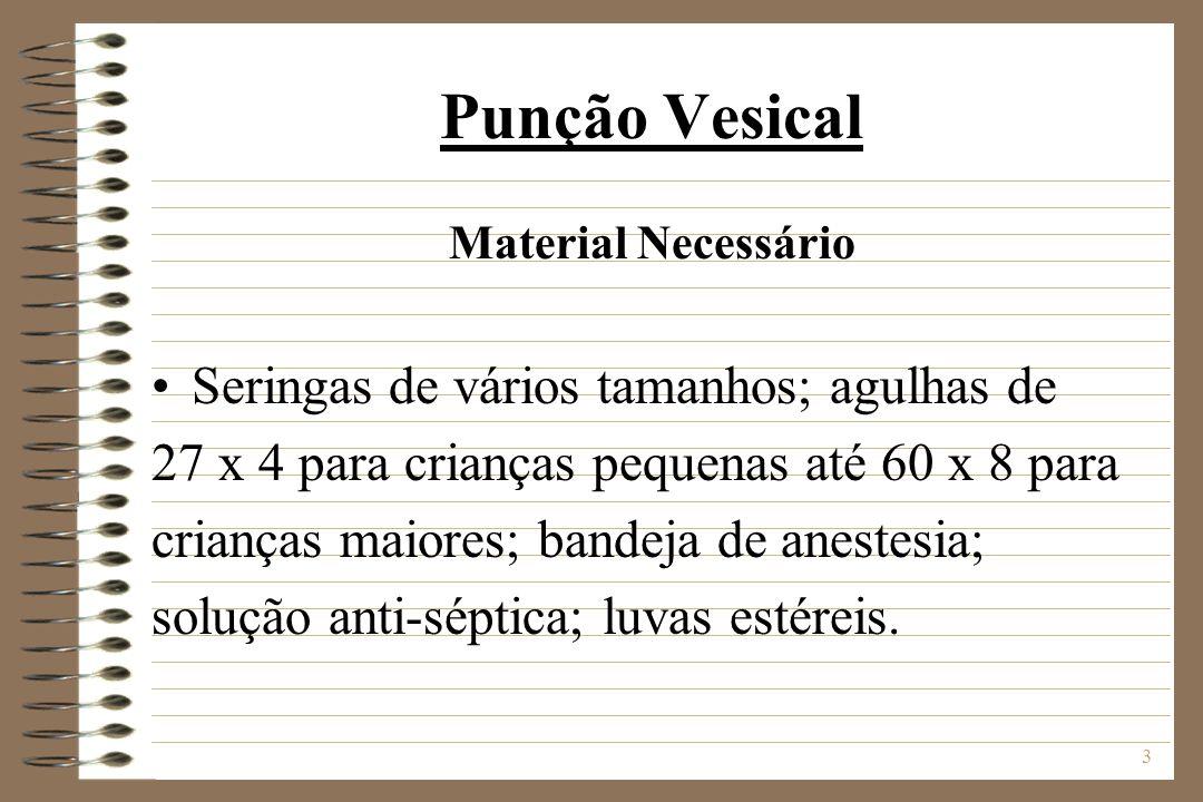 Punção Vesical Seringas de vários tamanhos; agulhas de