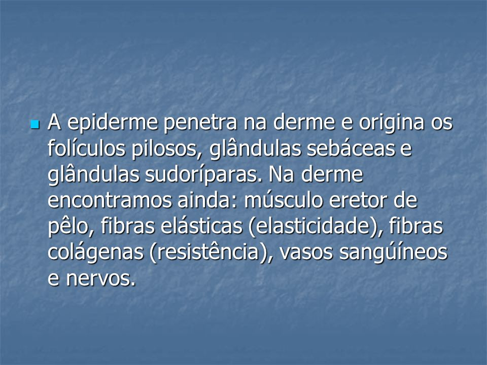 A epiderme penetra na derme e origina os folículos pilosos, glândulas sebáceas e glândulas sudoríparas.