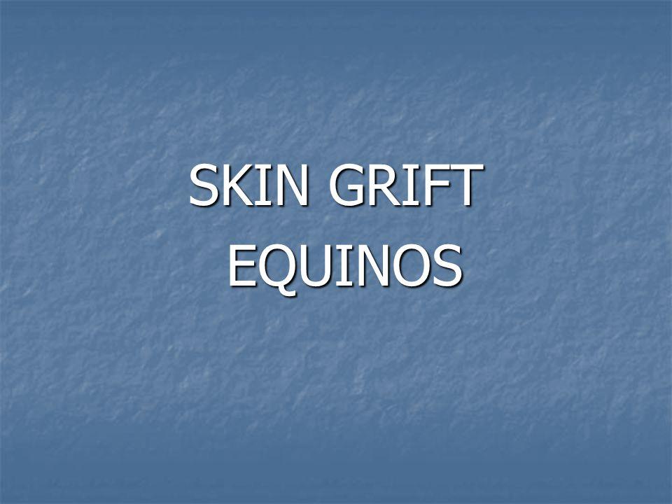 SKIN GRIFT EQUINOS