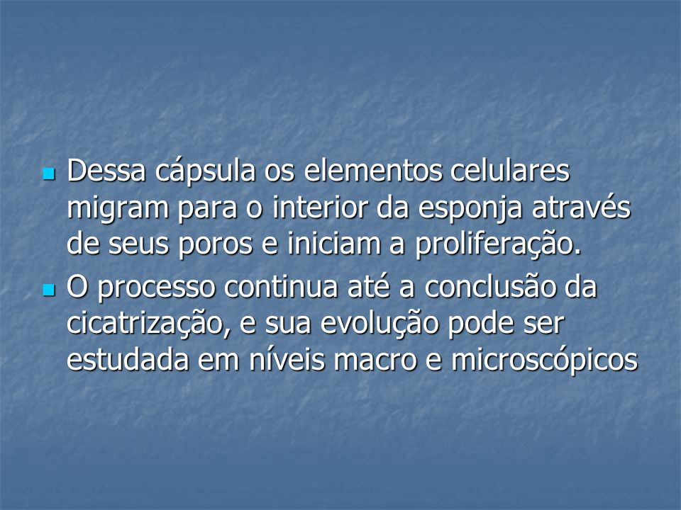 Dessa cápsula os elementos celulares migram para o interior da esponja através de seus poros e iniciam a proliferação.
