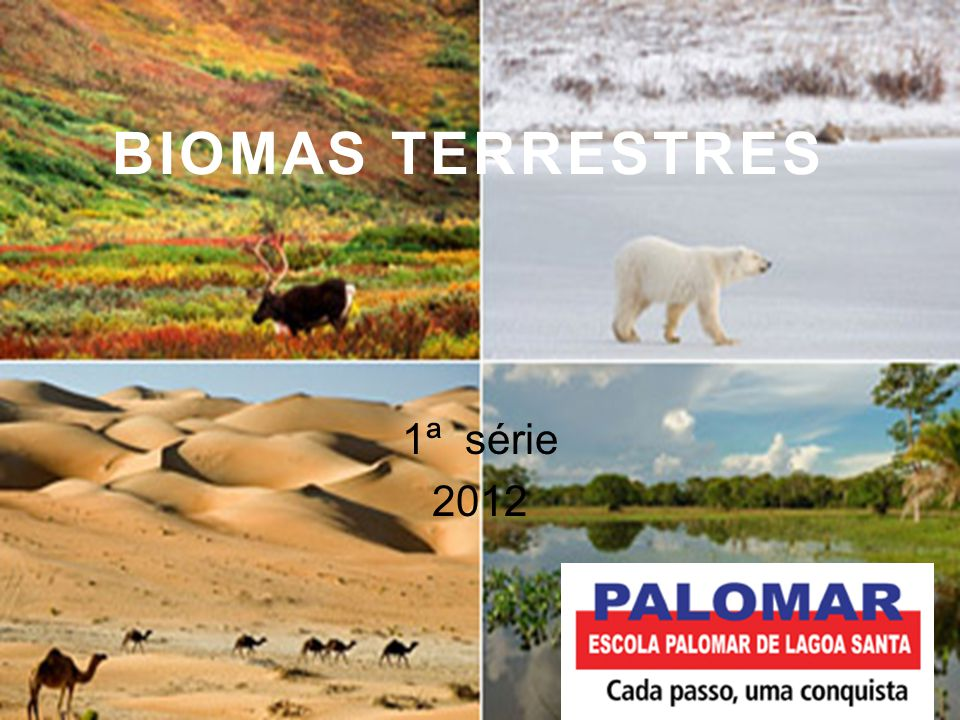 BIOMAS TERRESTRES 1ª série 2012