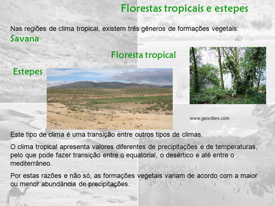 Florestas tropicais e estepes