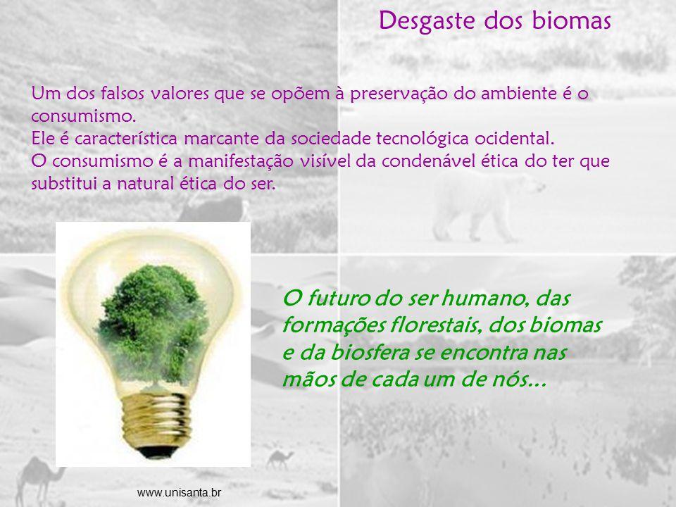 Desgaste dos biomas Um dos falsos valores que se opõem à preservação do ambiente é o consumismo.