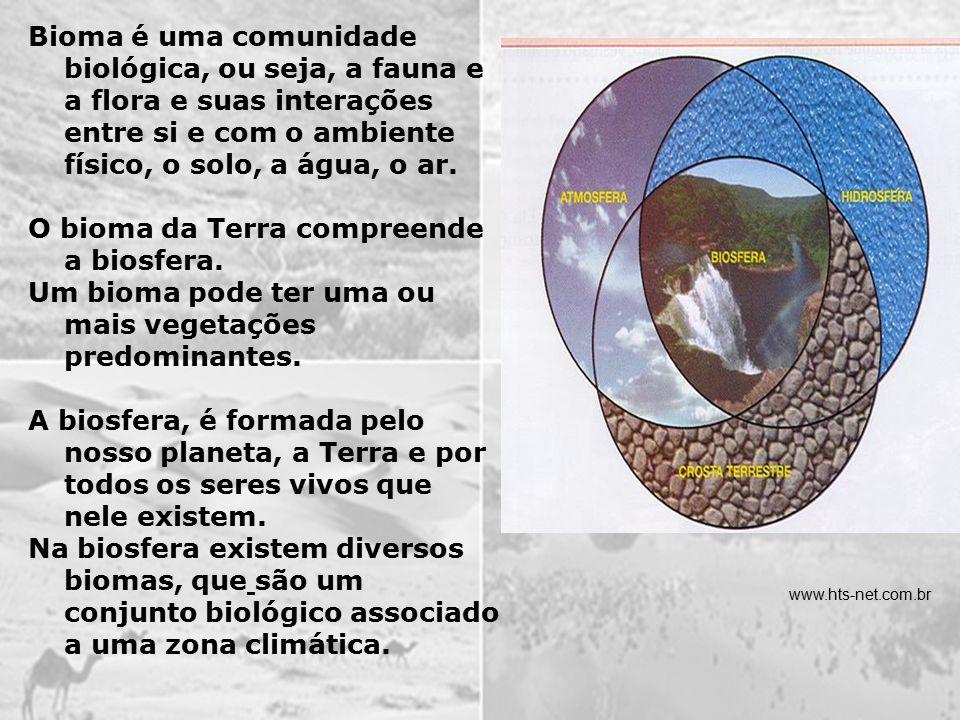 O bioma da Terra compreende a biosfera.