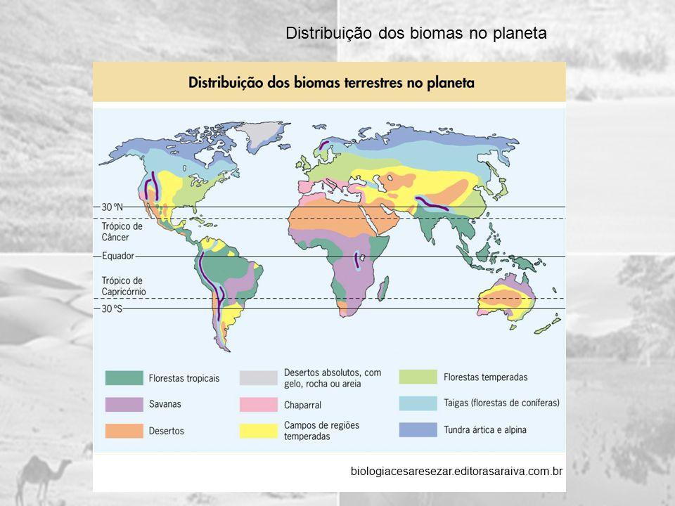 Distribuição dos biomas no planeta