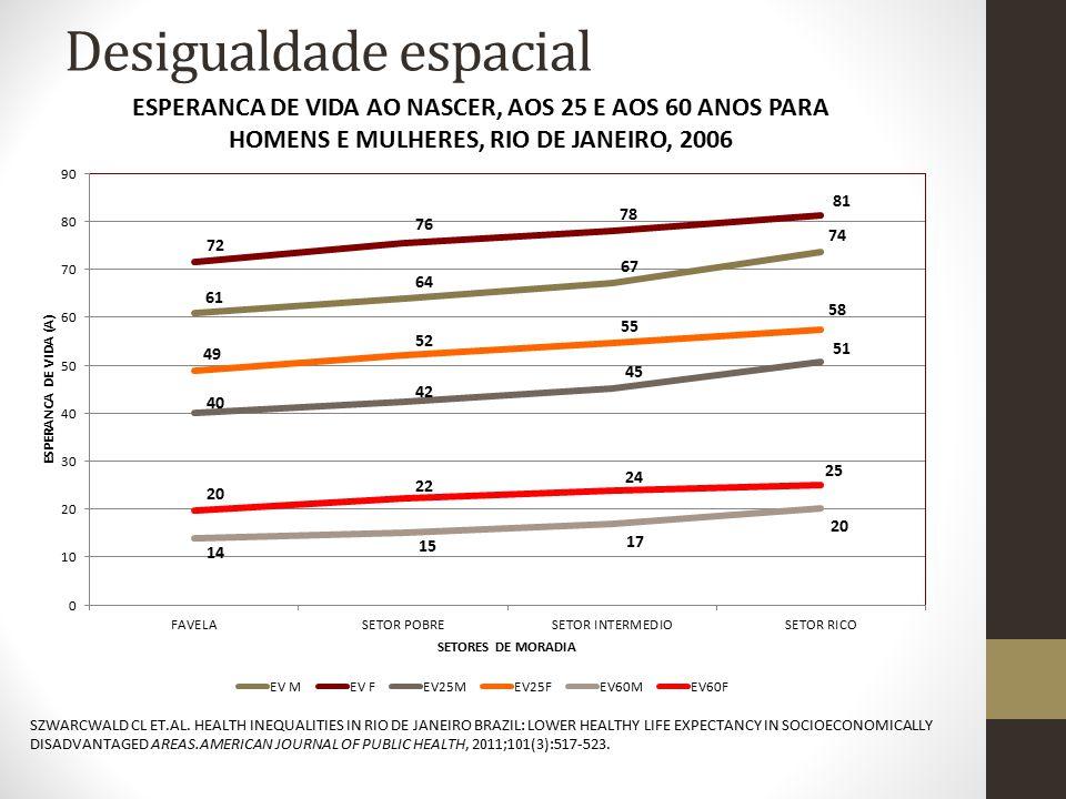 Desigualdade espacial