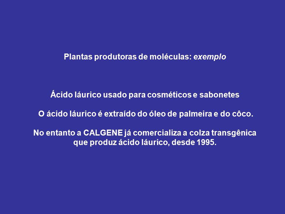 Plantas produtoras de moléculas: exemplo Ácido láurico usado para cosméticos e sabonetes O ácido láurico é extraído do óleo de palmeira e do côco.