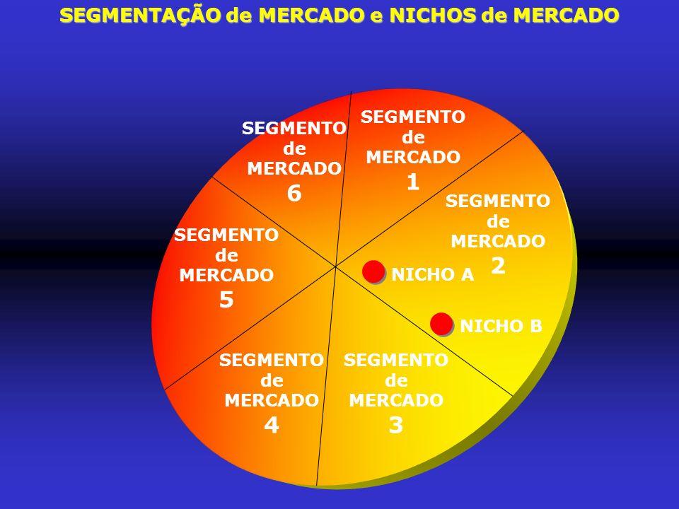SEGMENTAÇÃO de MERCADO e NICHOS de MERCADO