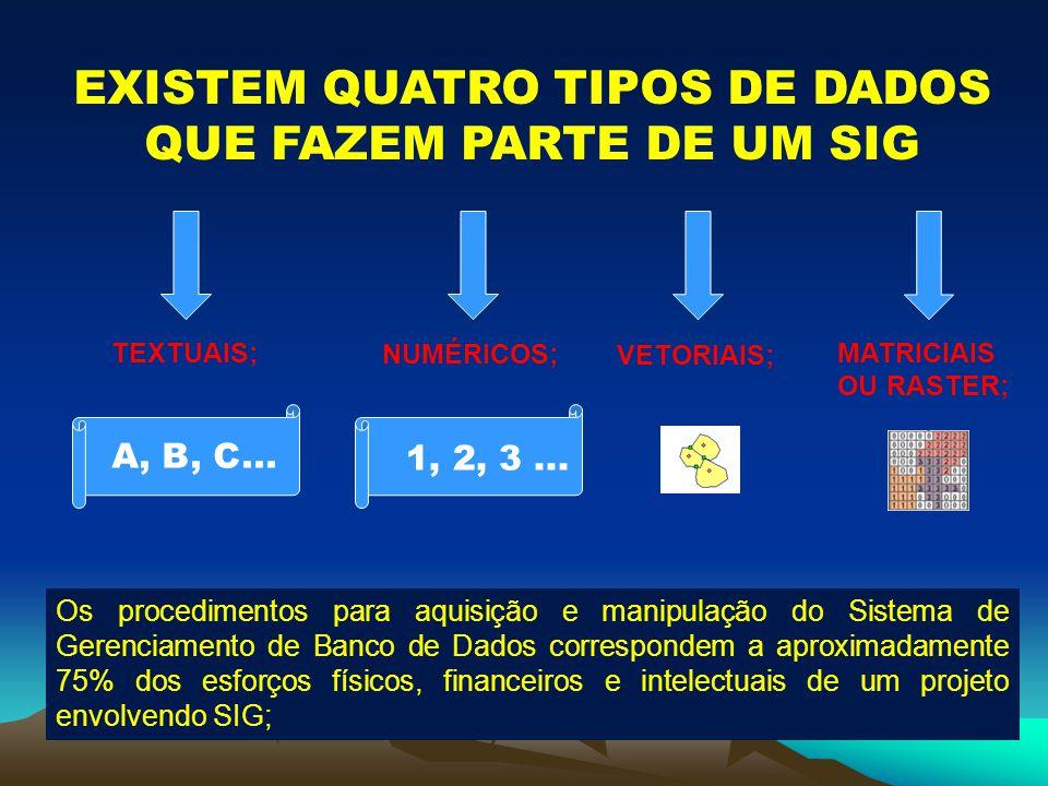 EXISTEM QUATRO TIPOS DE DADOS QUE FAZEM PARTE DE UM SIG