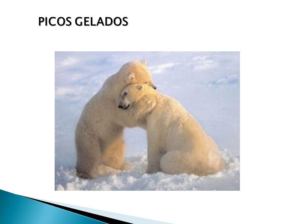 PICOS GELADOS