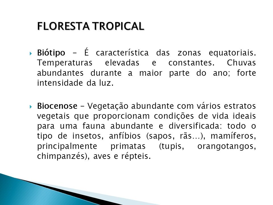 Floresta tropical