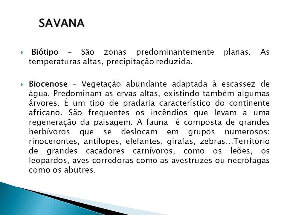 Savana Biótipo – São zonas predominantemente planas. As temperaturas altas, precipitação reduzida.