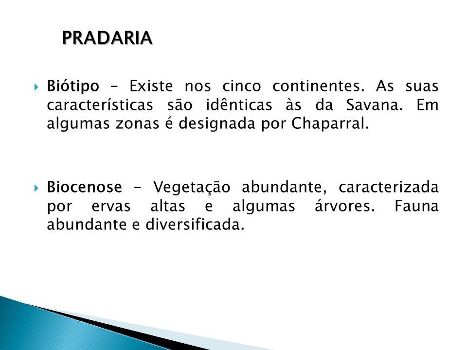 Pradaria Biótipo – Existe nos cinco continentes. As suas características são idênticas às da Savana. Em algumas zonas é designada por Chaparral.