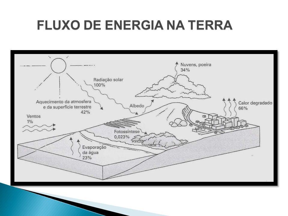 FLUXO DE ENERGIA NA TERRA