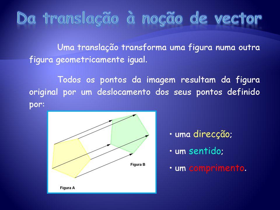 Da translação à noção de vector