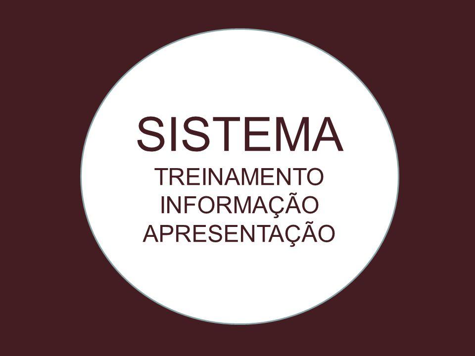 SISTEMA TREINAMENTO INFORMAÇÃO APRESENTAÇÃO