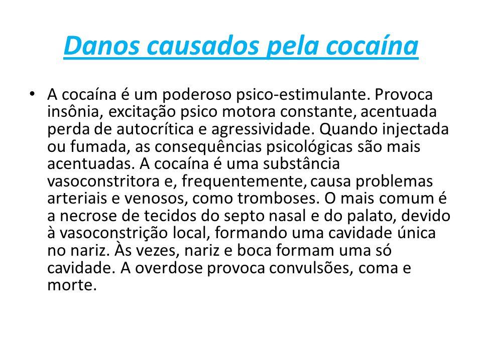Danos causados pela cocaína