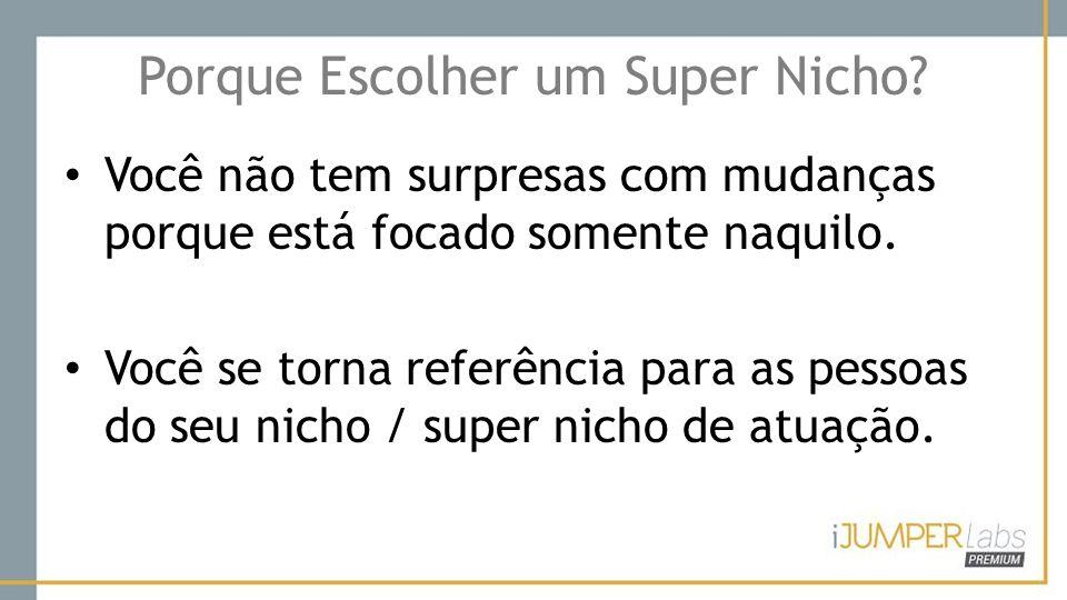 Porque Escolher um Super Nicho