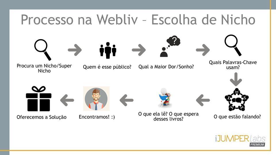 Processo na Webliv – Escolha de Nicho
