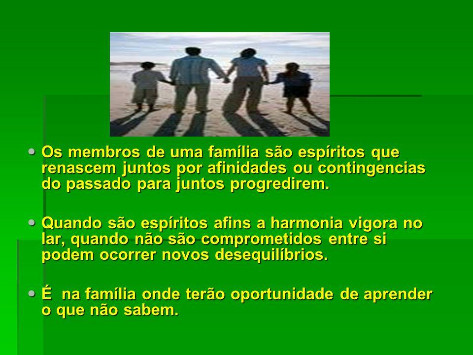 FAMÍLIA Os membros de uma família são espíritos que renascem juntos por afinidades ou contingencias do passado para juntos progredirem.