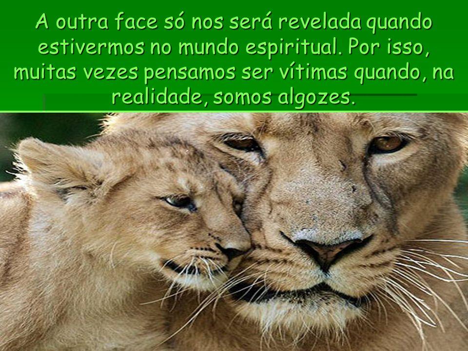 A outra face só nos será revelada quando estivermos no mundo espiritual.