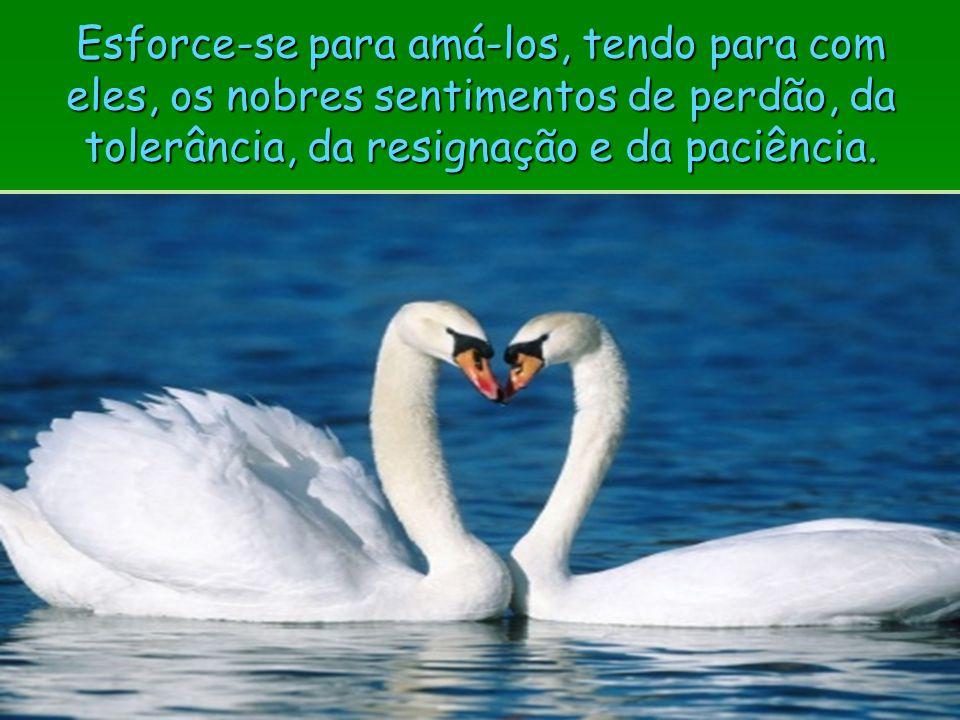 Esforce-se para amá-los, tendo para com eles, os nobres sentimentos de perdão, da tolerância, da resignação e da paciência.