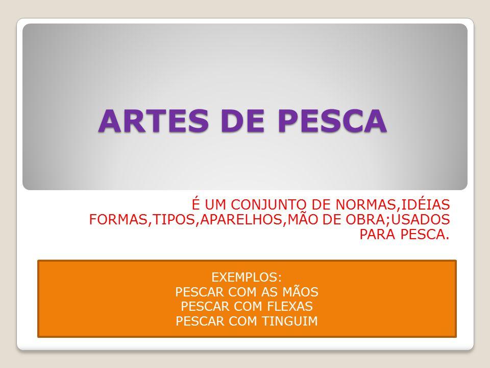 ARTES DE PESCA É UM CONJUNTO DE NORMAS,IDÉIAS FORMAS,TIPOS,APARELHOS,MÃO DE OBRA;USADOS PARA PESCA.