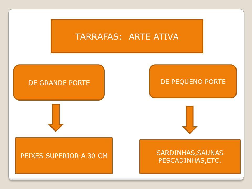 SARDINHAS,SAUNAS PESCADINHAS,ETC.