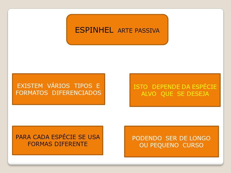 ESPINHEL ARTE PASSIVA EXISTEM VÁRIOS TIPOS E FORMATOS DIFERENCIADOS