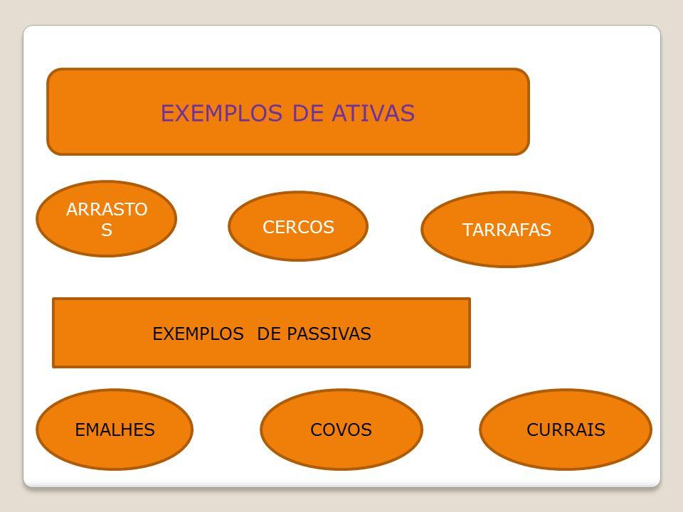EXEMPLOS DE ATIVAS ARRASTOS CERCOS TARRAFAS EXEMPLOS DE PASSIVAS