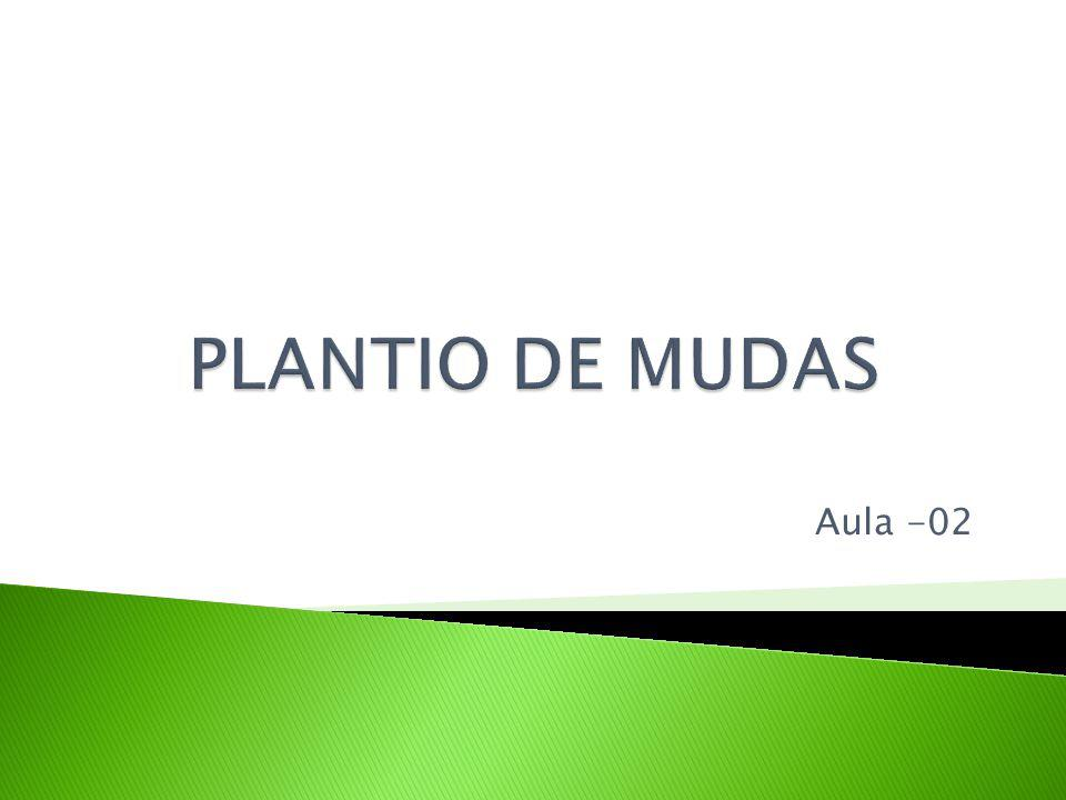 PLANTIO DE MUDAS Aula -02