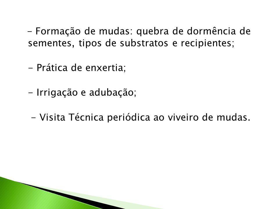 - Formação de mudas: quebra de dormência de sementes, tipos de substratos e recipientes;