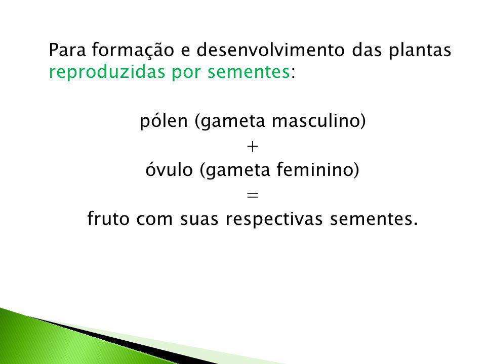 Para formação e desenvolvimento das plantas reproduzidas por sementes: pólen (gameta masculino) + óvulo (gameta feminino) = fruto com suas respectivas sementes.