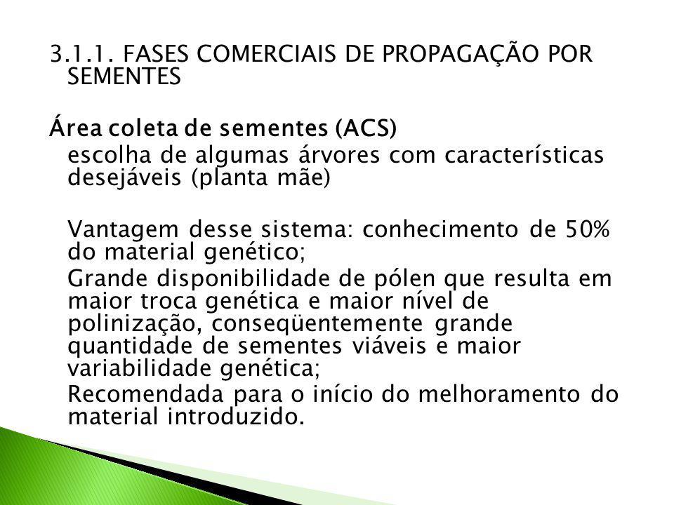 3.1.1. FASES COMERCIAIS DE PROPAGAÇÃO POR SEMENTES