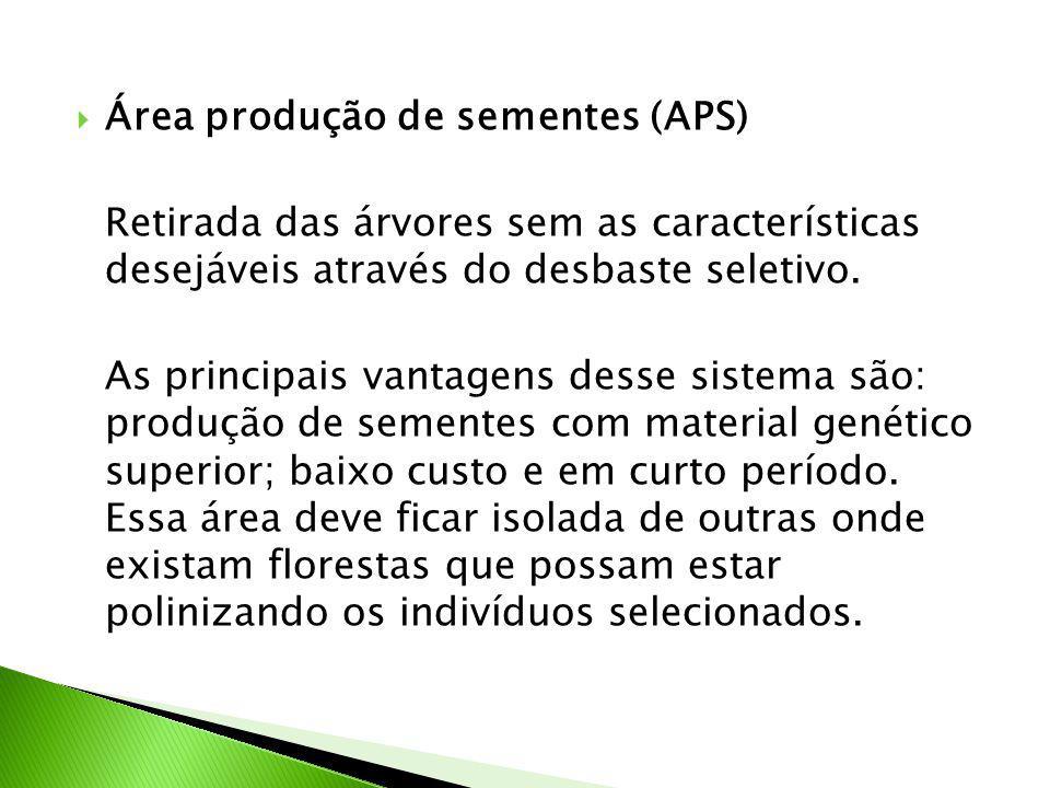 Área produção de sementes (APS)