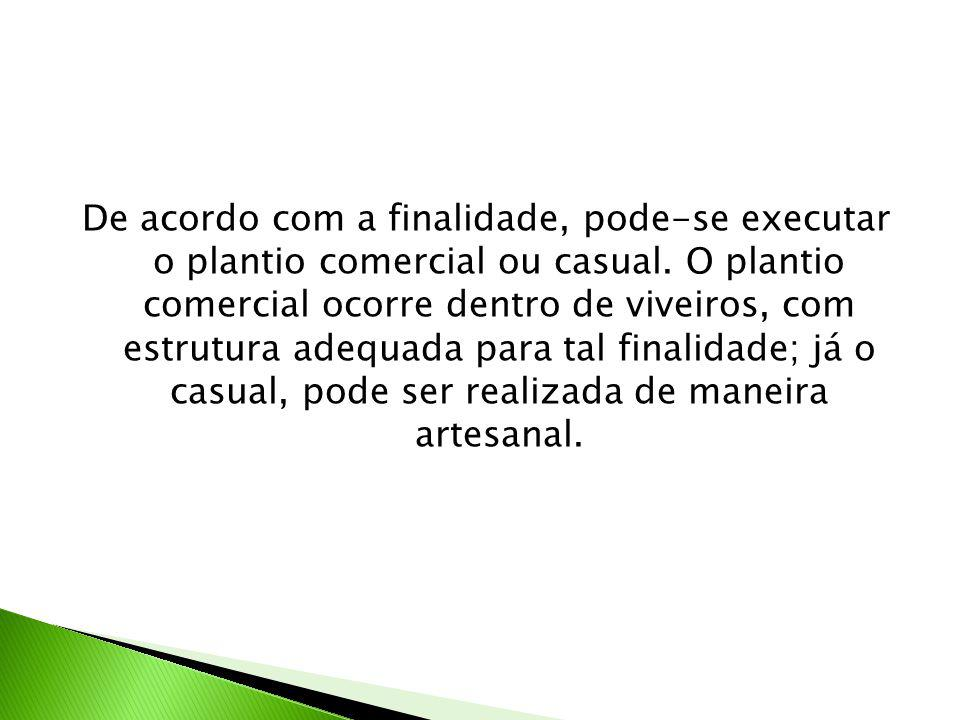 De acordo com a finalidade, pode-se executar o plantio comercial ou casual.