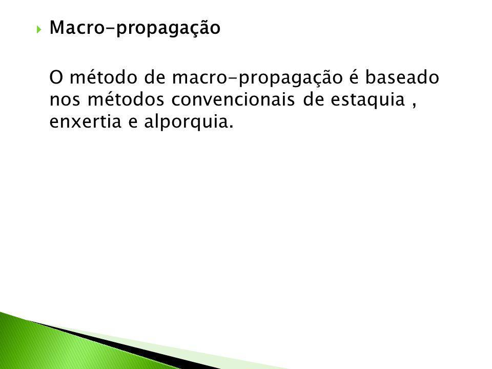 Macro-propagação O método de macro-propagação é baseado nos métodos convencionais de estaquia , enxertia e alporquia.