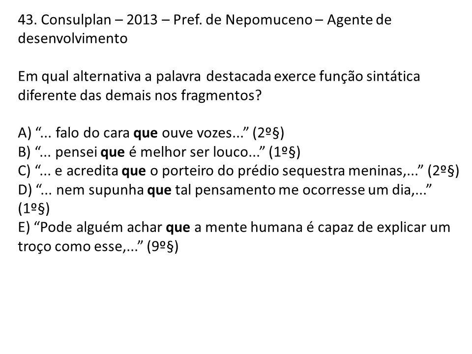 43. Consulplan – 2013 – Pref. de Nepomuceno – Agente de desenvolvimento