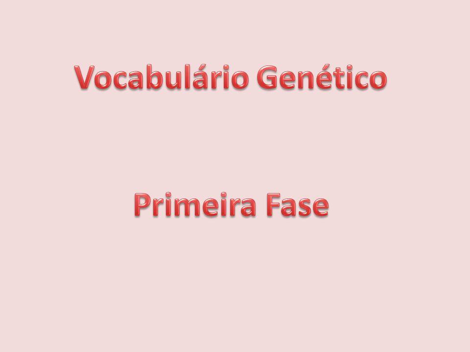 Vocabulário Genético Primeira Fase
