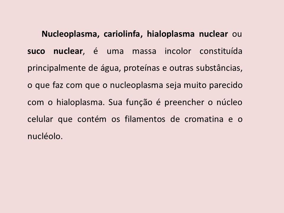 Nucleoplasma, cariolinfa, hialoplasma nuclear ou suco nuclear, é uma massa incolor constituída principalmente de água, proteínas e outras substâncias, o que faz com que o nucleoplasma seja muito parecido com o hialoplasma.