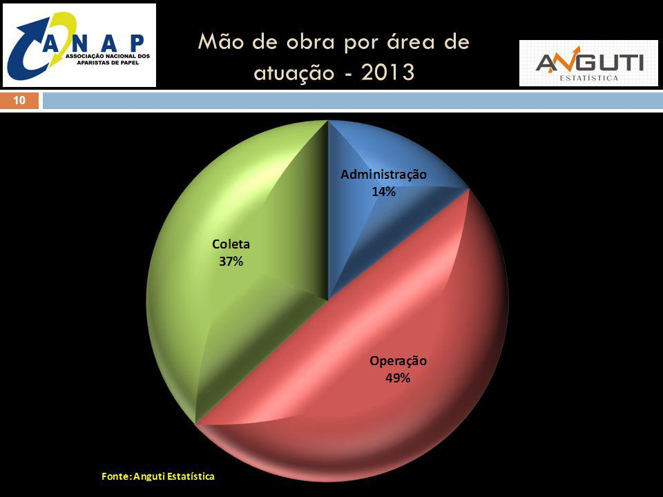 Mão de obra por área de atuação - 2013