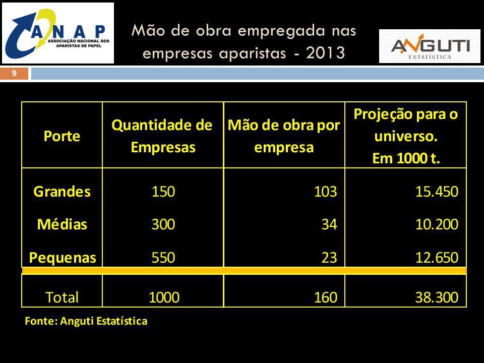 Mão de obra empregada nas empresas aparistas - 2013