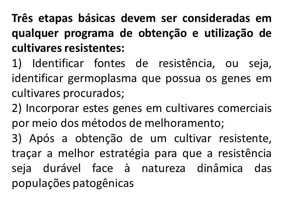 Três etapas básicas devem ser consideradas em qualquer programa de obtenção e utilização de cultivares resistentes: