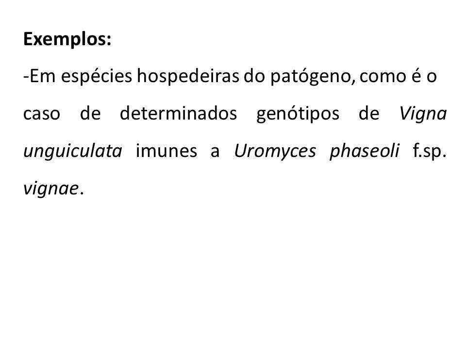 Exemplos: -Em espécies hospedeiras do patógeno, como é o.