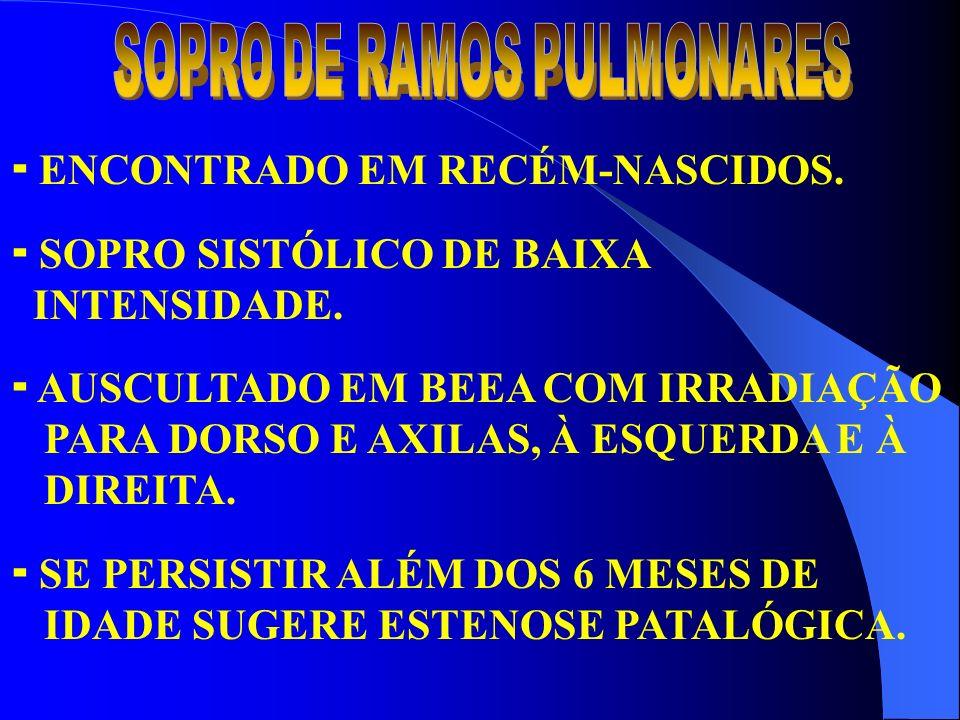 SOPRO DE RAMOS PULMONARES