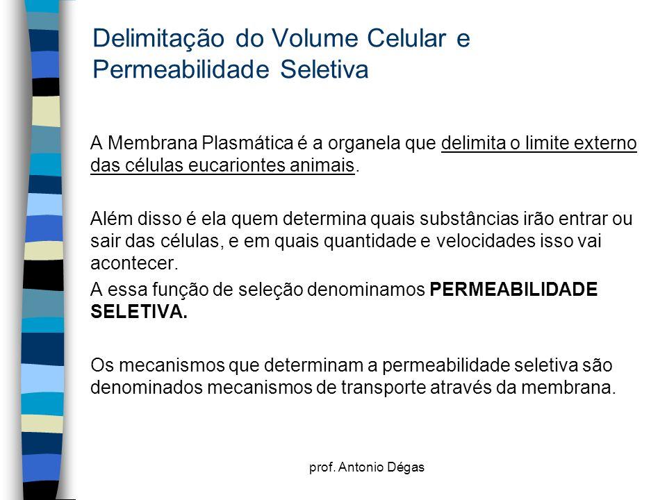 Delimitação do Volume Celular e Permeabilidade Seletiva
